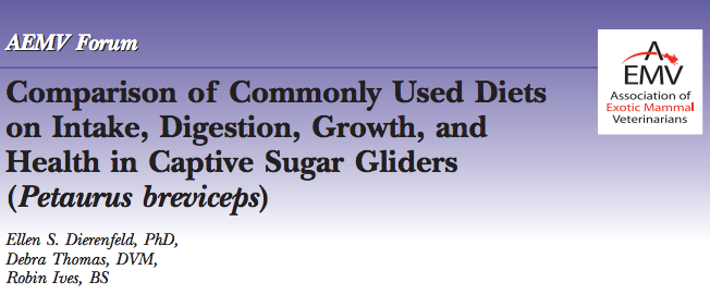 Sugar Glider Eating Trial